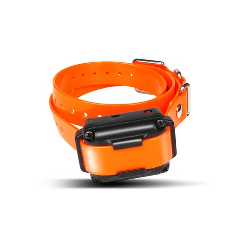 Dogtra iQ Plus Additional Receiver Collar