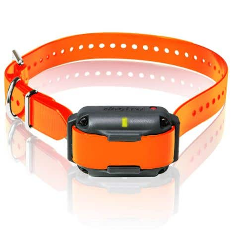 Dogtra Edge RT Additional Collar - Orange