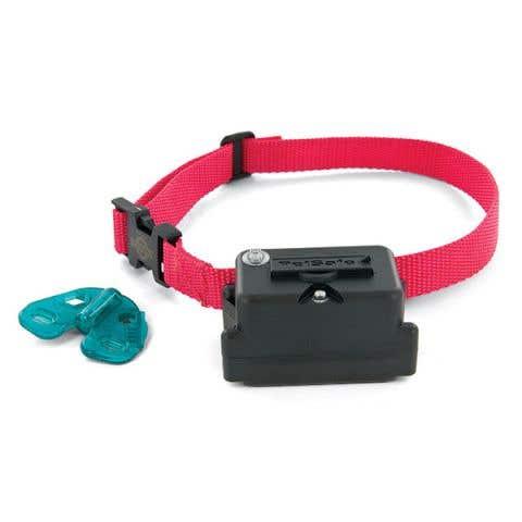 PetSafe Stubborn Dog Extra Receiver Collar - PIG19-10763