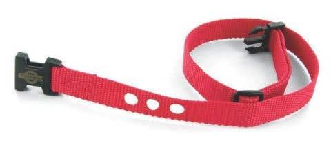 PetSafe Red Nylon Strap