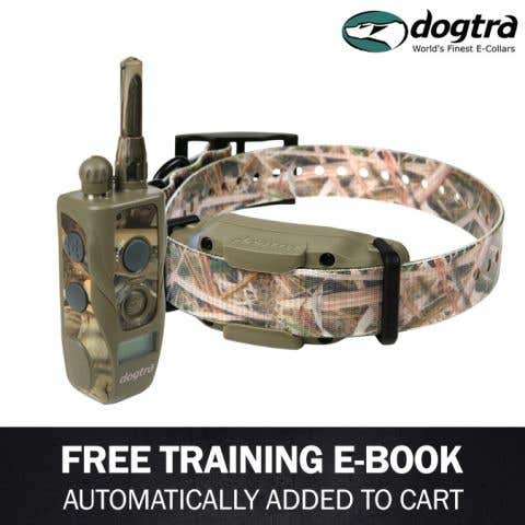 Dogtra 1900S Wetlands Remote Trainer
