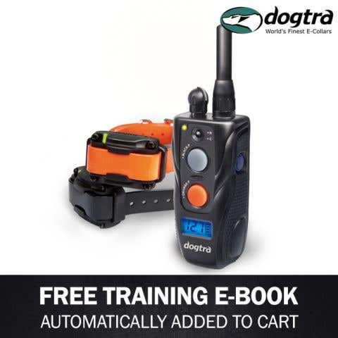 Dogtra 282C Remote Trainer - 2 Dog System