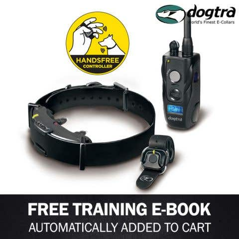Dogtra ARC Handsfree Remote Trainer