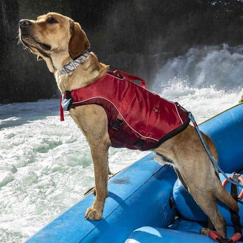 Kurgo Surf 'n' Turf Dog Life Jacket