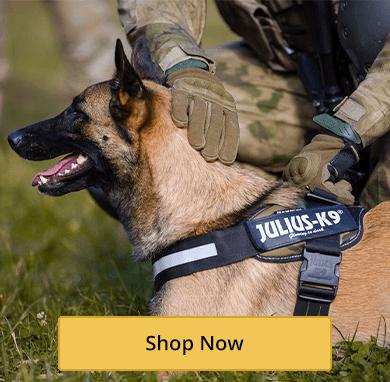 Tactical Harnesses