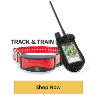 GPS Track and Train Systems