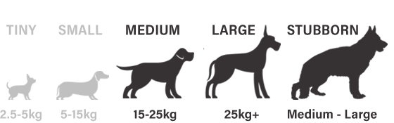 Suitable for medium, large and stubborn dogs