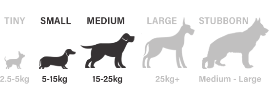 suitable for small and medium sized dogs