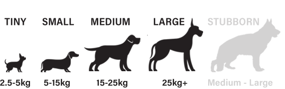 Suitable for tiny, small, medium and large dogs