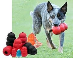 Kong Dog Toys Australia