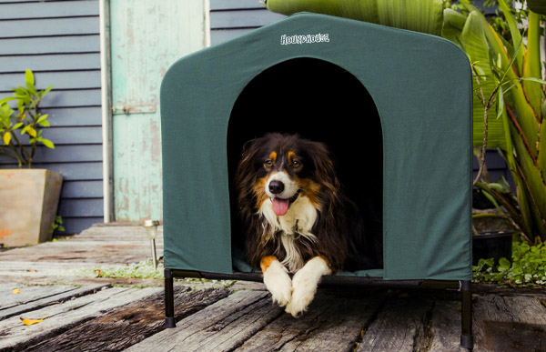 HoundHouse Canvas Dog Kennels Have Just Arrived!